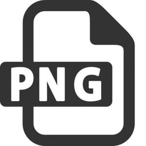png icon 23704 300x300